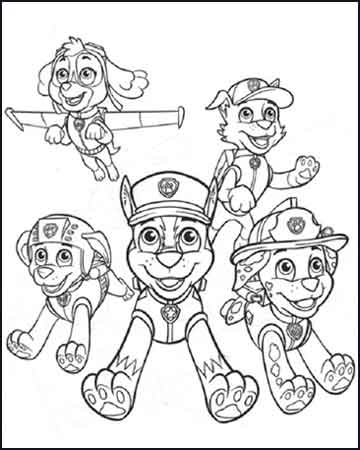 Chase Marshall Rocky Zuma y Skye la patrulla canina - Desenhos para colorir